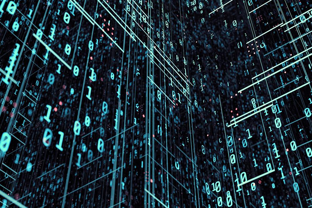baza danych produktów